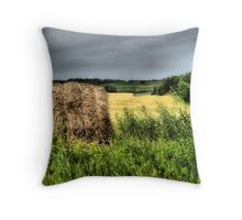 Painting the Prairies Throw Pillow