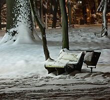 Winter Bench by fine