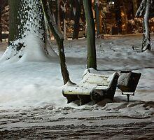 Winter Bench by fine
