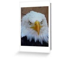 Eagle 3 Greeting Card