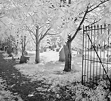 Graveyard Gate by Ann Garrett