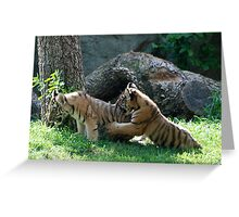 Children at play Greeting Card