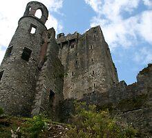 Blarney castle 2 by nicholaTisdall