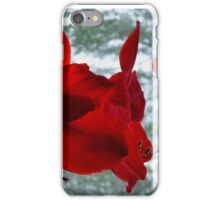 Snow White & Rosy Red iPhone Case/Skin