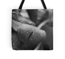 This is Not the End Tote Bag
