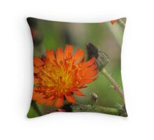 Paint Brush Bloom Throw Pillow