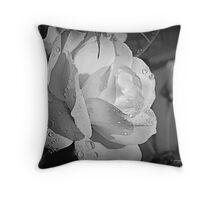 White Iceberg Rose Throw Pillow