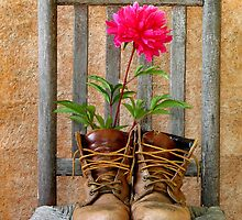 Shoes of the Gardener by robertjoseph