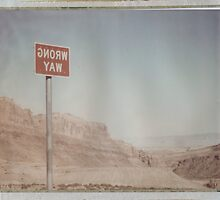 Wrong Way Nevada (8x10 Polaroid) by Steven Godfrey