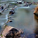 Take Me to the River by FuriousEnnui