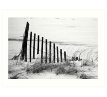 Dune Fence in Snow Art Print