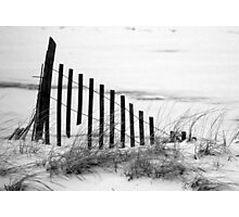 Dune Fence in Snow Photographic Print