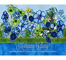 Vintage Morning Glory Photographic Print