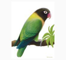 Masked Lovebird Green by Carolyn  McFann
