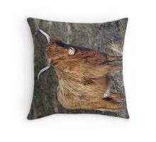 Cow in Field  Throw Pillow