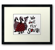 Oakland Geese don't fly South Framed Print