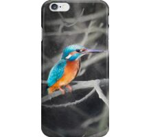 Kingfisher iPhone Case/Skin