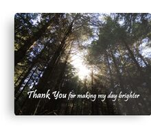 Making My Day Brighter (Thank You)  Metal Print