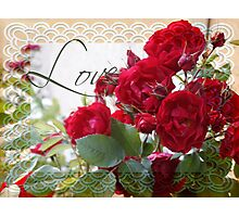 Red Roses, Love and Lace Photographic Print