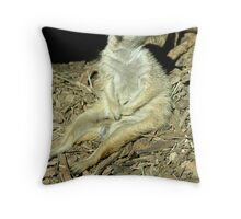What are you staring at? Throw Pillow