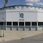 Panoramic Tiger Stadium by MrNK4rd