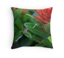 St Andrews Cross Spider Hiding Throw Pillow