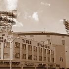 Tiger Stadium by MrNK4rd