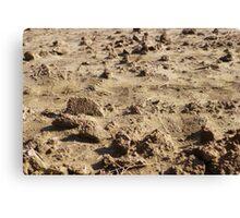 Martian Landscape...Down On The Farm Canvas Print