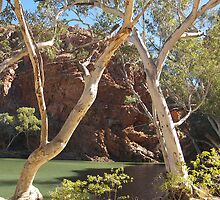 Ellery Creek Big Hole, West MacDonnell Ranges, Northern Territory by Lisa Evans