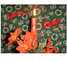Season''s Greetings #1 by C J Lewis