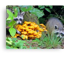 """""""Let's pinch some Witchy Orange Delights"""" Canvas Print"""