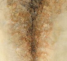 Rooted by Sally Hunter