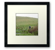 Fishing on the Hill Framed Print