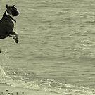 High Jumper by Steven McEwan