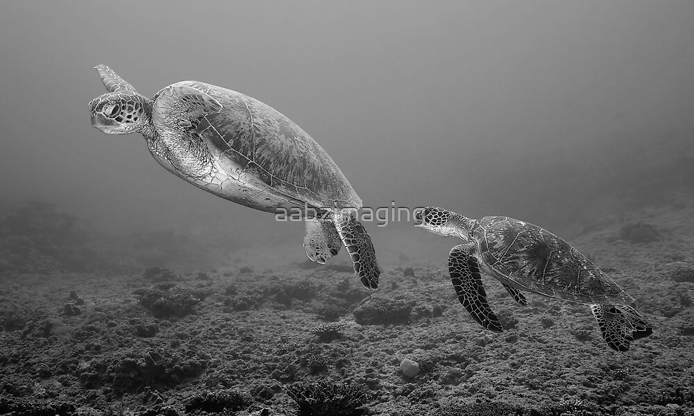 Underwater Rendevouz by aabzimaging