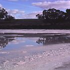 Pink Lakes Victoria#2 by Maggie Hegarty