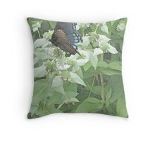 Settled on Mountain Mint Throw Pillow