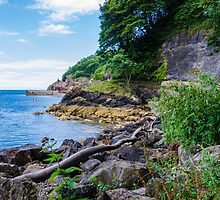 The Beautiful Wild Side of Babbacombe Bay, Devon, England by atomov