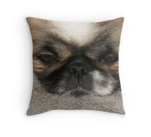 Mei Ling's sweet puppy dog eyes!  Throw Pillow