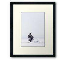 Lonely Landscape Framed Print