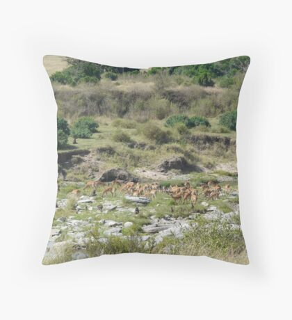 Baboons and Antelope Together Throw Pillow