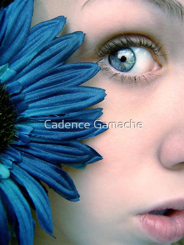 Peek by Cadence Gamache