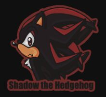 Shadow the Hedgehog -bust- by The-Firestorm