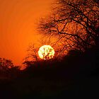 """MY AFRICAN SUNSET """"TODAY"""" by Magriet Meintjes"""