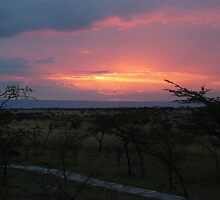Masai Sunset by Steven Bassion