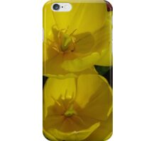 Two Yellow Tulips iPhone Case/Skin
