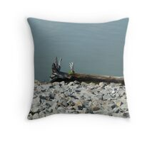 Driftwood On The River Throw Pillow