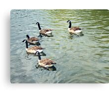Guess Who Can't Keep In Step.. Canvas Print