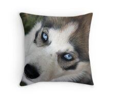 Bella's Blue Eyes Throw Pillow