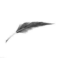 Lonely Feather by xxmewxx4444